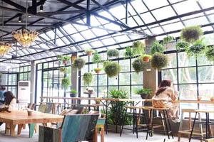 đề án kinh doanh quán cafe