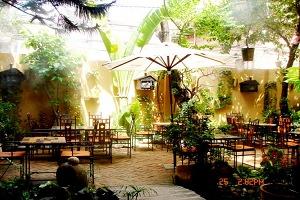 thi công quán cafe sân vườn