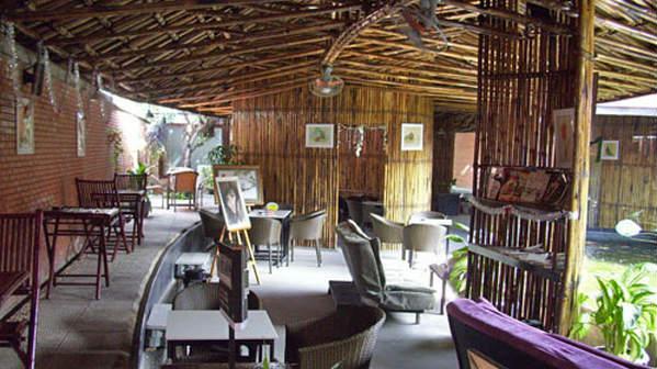 Tư vấn thiết kế mái che quán cafe sân vườn ảnh 2